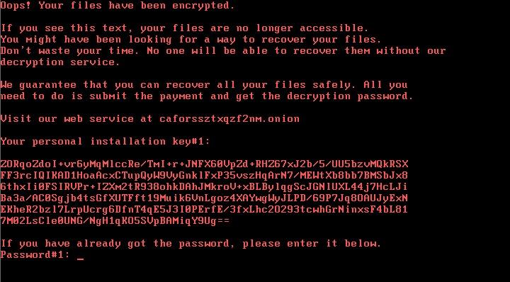 Yeni Bir Siber Saldırı:BadRabbit